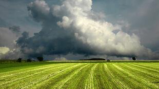 Prognoza pogody na jutro: gorący piątek ze słońcem i burzami