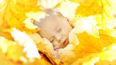 Urodziłeś się jesienią? Masz większą szansę dożyć setki
